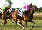 Florida Million Returns to Calder Saturday