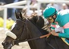Zenyatta Sends Right Message in Final BC Work