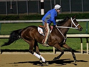 Havre de Grace Works 5 Furlongs at Churchill