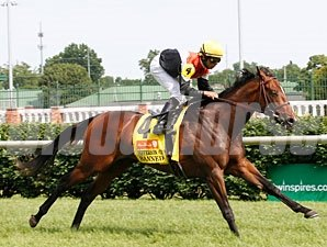Banned wins the 2011 Jefferson Cup.