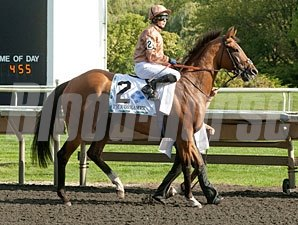 I'm A Dreamer wins the 2012 Beverly D.