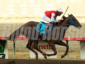 Seattle Ruler wins the 2009 Barretts Juvenile Stakes.
