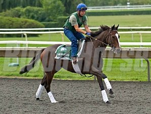 Stars to Shine - Arlington Park, August 16, 2012.