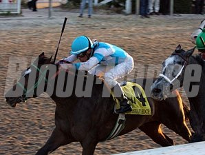 Stonehouse wins the 2010 Mineshaft.