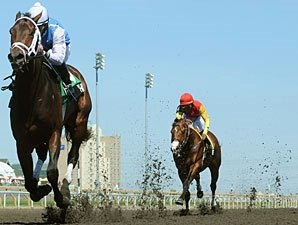 Exhi Rolls in Woodbine's Marine Stakes