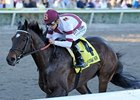 Personal Ensign Next Stop for Royal Delta