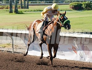Munnings Sister wins the 2012 California Wine Stakes.