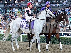 Za Approval in the post parade for the 2013 Breeders' Cup Mile.