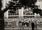 Secretariat Podcast: Belmont, Ron Turcotte