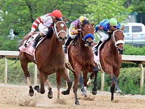 Havre de Grace Picks Off Apple Blossom