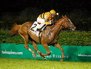 Wise Dan, Successful Dan Breeze at Saratoga