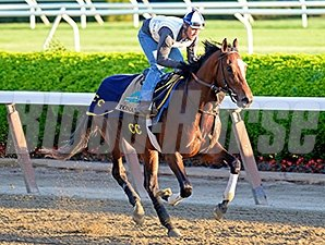 Tonalist at Belmont Park June 2.