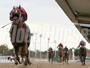 Pedrolino wins the 2011 Claiming Crown - The Iron Horse Stakes
