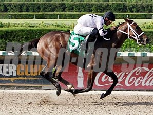 Dreaming of Sophia wins the 2012 Cassidy Stakes.