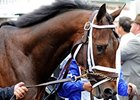 Pletcher: Super Saver Will Undergo Tests