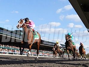 In Lingerie wins the 2012 Spinster.