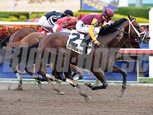 Soaring Stocks wins the 2012 FL Sunshine Millions Sprint.