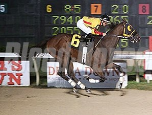 Heitai, New Track Record, Delta Downs, November 1, 2013.