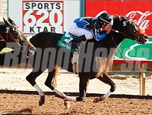 Taste's Sis wins the 2009 Kachina Handicap.