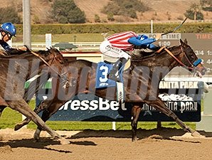 Awesome Baby wins the 2014 Santa Ynez.