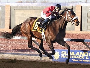 Peppers Pride Garner's NM-Bred Honors