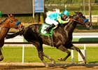 Baffert Trio Formidable in Las Flores