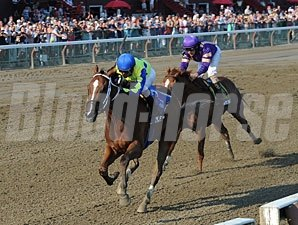 Escapefromreality wins the 2013 Albany Stakes.