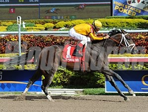 Kauai Katie wins the 2013 Old Hat Stakes.