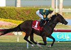 Duke of Homberg Faces Six in Palm Beach