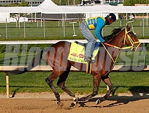 Wildcat Red - Churchill Downs, April 23, 2014.