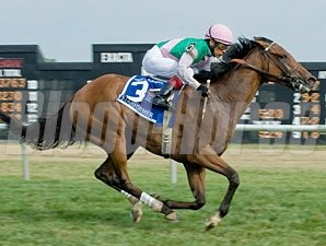 Starformer wins the 2012 Robert G. Dick Memorial Stakes.