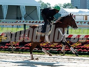 Goldencents jogs 5/12/2013