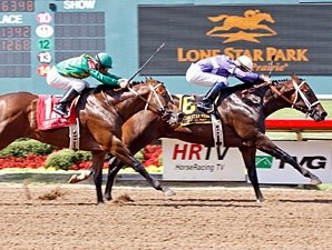 Texas-Bred Lil Cherokee Tries Bashford Manor
