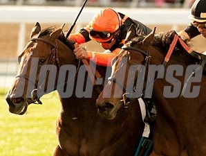 Tales in Excess wins the 2010 Blue Norther.