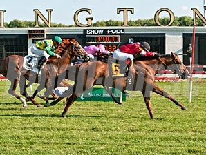 Rahystrada wins the 2013 Arlington Handicap.