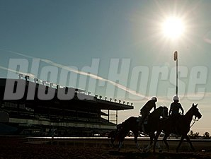 We Miss Artie - Woodbine, July 5, 2014.