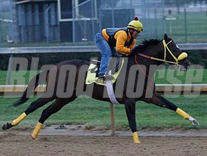 Giant Ryan works at Churchill Downs on October 19, 2011.