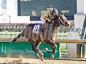 Commanding Curve Maiden Win, November 30, 2013.