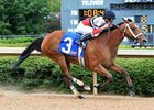 Calhoun Trio Heads Winning Colors Field