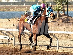 Roses Desert wins the 2012 New Mexico State Racing Commission Handicap.