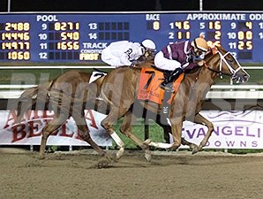 Joy of the Saints wins the 2014 D. S. Shine Young Futurity.