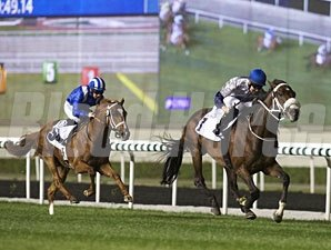 Await the Dawn wins the 2013 Al Naboodah Commercial Group Trophy.
