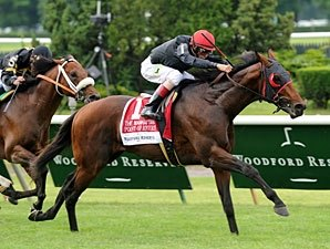 Point of Entry Suffers Condylar Fracture
