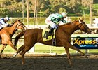 Striking Dancer Avoids Crowd, Wins La Canada