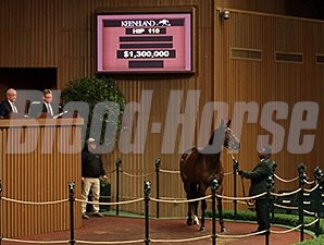 Nereid is sold at the Keeneland January Sale.