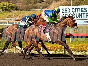 Include Me Out wins the 2013 Desert Stormer.