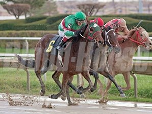 Julmae wins the 2012 Showtime Deb.