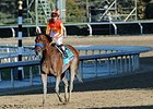 Podcast: Eclipse Awards 2013: Sprint Division