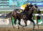Kauai Katie is Star of Old Hat, GP Derby Day