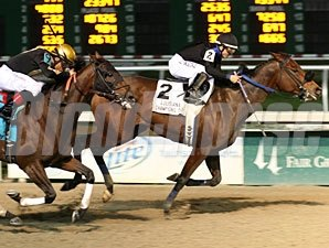 Harlie's Dreams wins the 2012 Louisiana Champions Day Ladies Sprint.